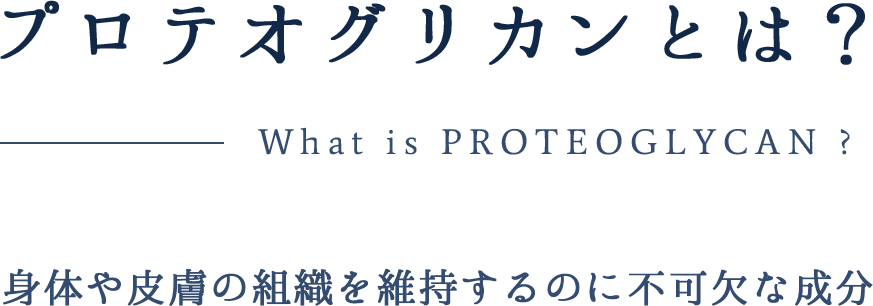 プロテオグリカンとは?身体や皮膚の組織を維持するのに不可欠な成分