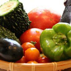 旬の食べ物で内側からケア